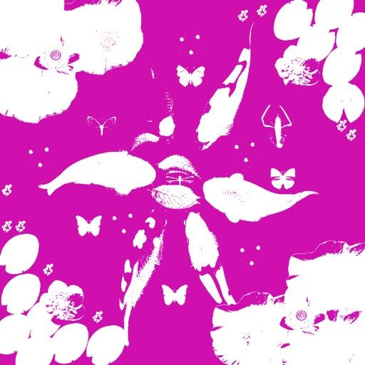 Koi & Flower HD