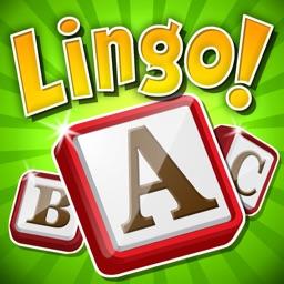 Lingo!