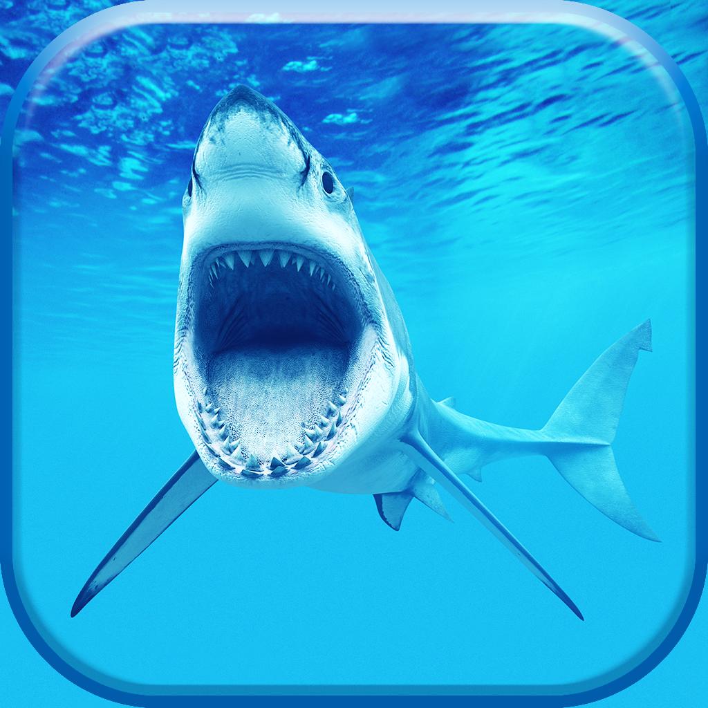 サメ壁紙 そして ロック画面 テーマ 画面をポン引き とともに 最高の