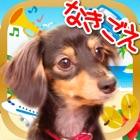 鳴き声タッチ-動物・乗り物・楽器の写真と音 icon