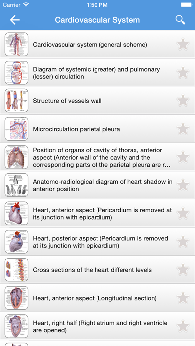 Human Anatomy 2017 screenshot three