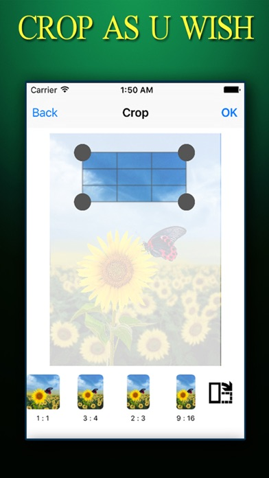 CROP PHOTO ++ Crop Photos Instantly With Effects Editing