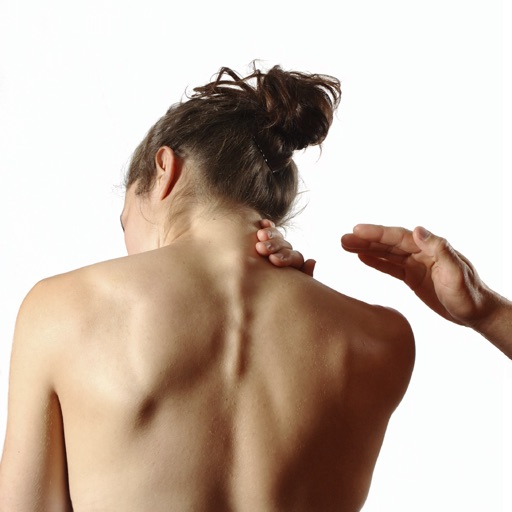 Massage and Therapy Terminology and Glossary: for MBLEx. NCETM and NCETMB Exam Prep