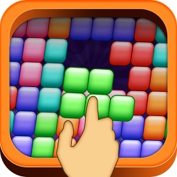 Brick Puzzles