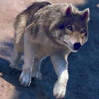 Codes for My Free Wolf Game Simulator For Kids Hack