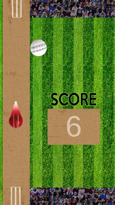 Bing Bong Cricket screenshot two