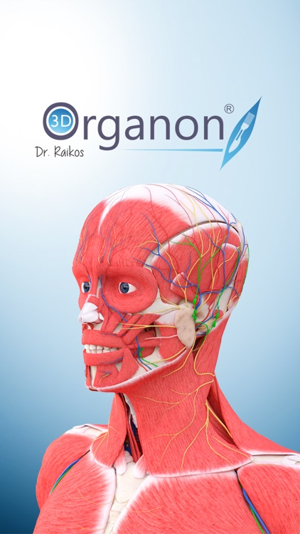 3D Organon Anatomy - Muscles, Skeleton, and Ligaments screenshot-4