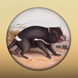 Field Guide to Tasmanian Fauna