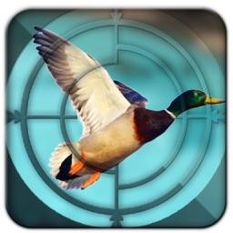 Duck Hunting Light-3D