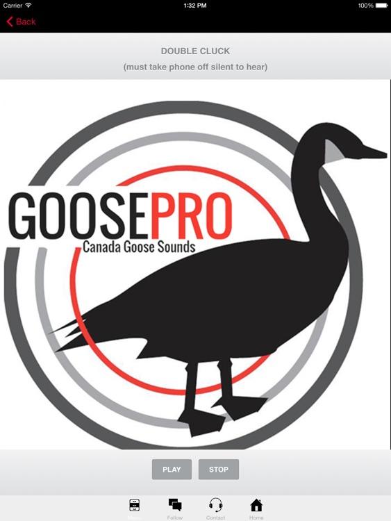 Goose Hunting Calls-Goose Sounds Goose Call App screenshot-3