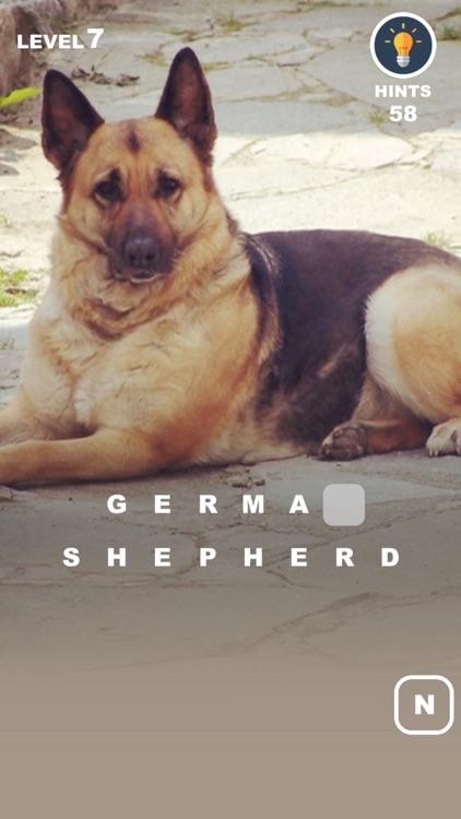 Dog Genius – photo trivia with puppies in makeup screenshot-3