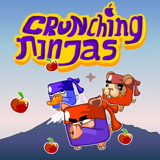 Crunching Ninjas • icon