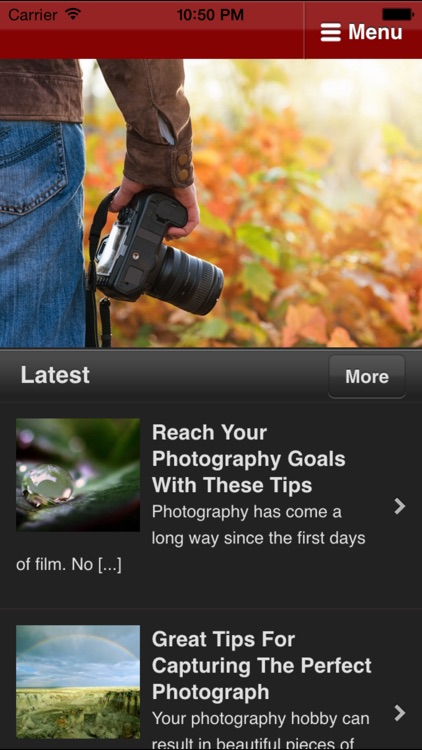 Photography For Beginners - Great Shots With Any Camera