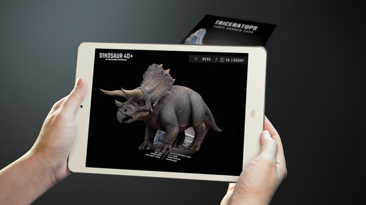 Dinosaur 4D+ screenshot-1