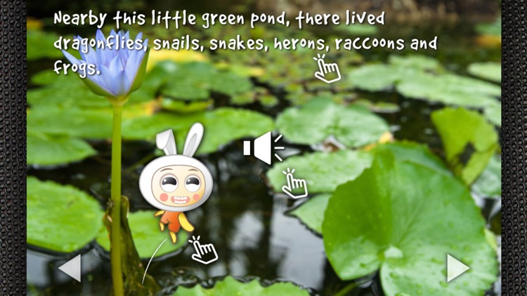 Ribbit, Did I Just Say Ribbit?:  Hear to Learn Animal Sounds - Children's Story Book