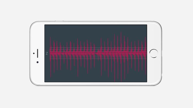 Hamm Seismograph screenshot-3