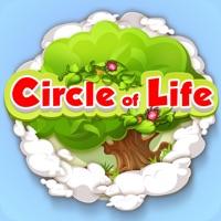 Codes for _CircleOfLife Hack