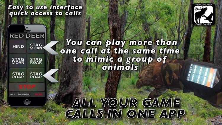 NZ GAME CALLS screenshot-3