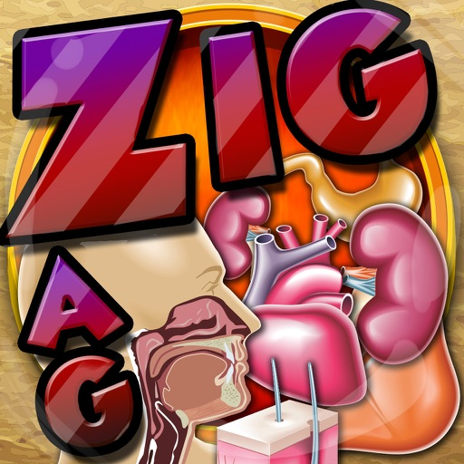Words Zigzag : Anatomy and Physiology Crossword Puzzles Pro with Friends
