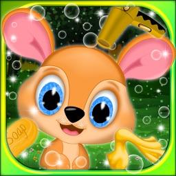 Baby Kangaroo Salon