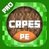 Saliha Bhutta - MineSkins Pro - Skin Capes for Minecraft PE (Pocket Edition) artwork
