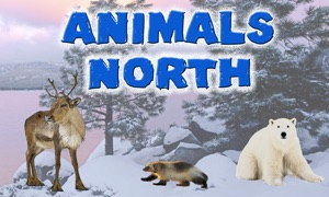 Animals North