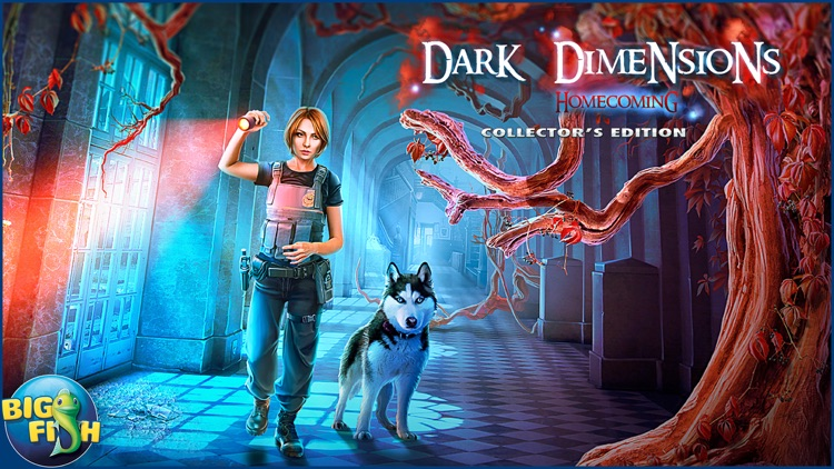 Dark Dimensions: Homecoming - A Hidden Object Mystery (Full) screenshot-4