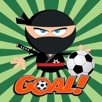 Codes for Ninja Touch Soccer - Free Sport Games for Kids kick for Goal Hack