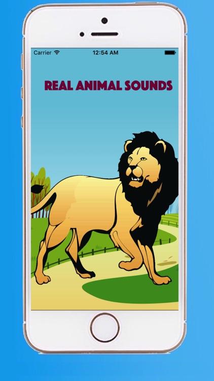 Real animal sounds
