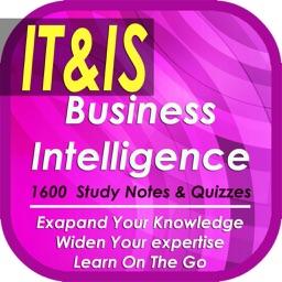 Explore Business Intelligence: 1600 Study Notes & Quizzes (Principles, practices & tactics)