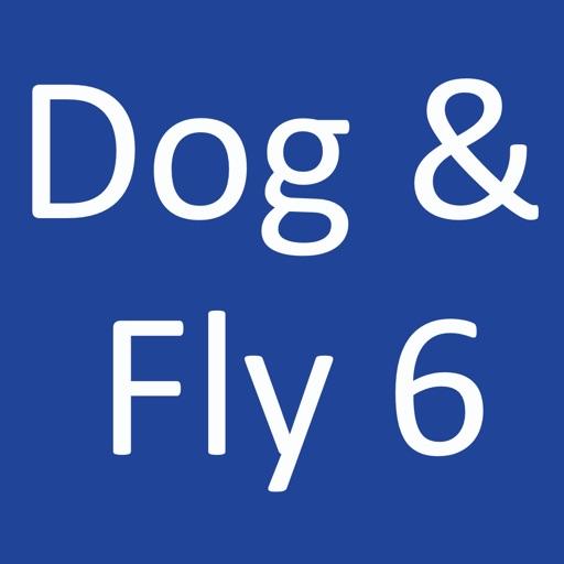 Dog & Fly 6