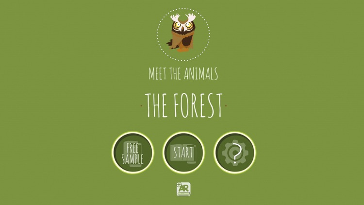 Meet the Animals - The Forest