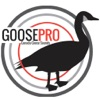 Goose Hunting Calls-Goose Sounds-Goose Call App