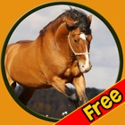 talented horses for kids - free icon