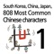 South Korea, China, Japan 808 Most Common Chinese characters(chapter1)