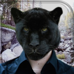 Animal Head Photo Montage