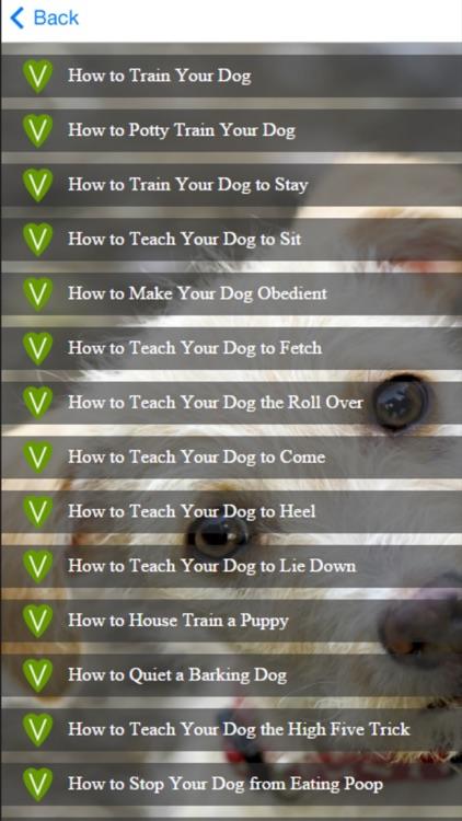 Dog Training - Learn How to House Train a Dog screenshot-3