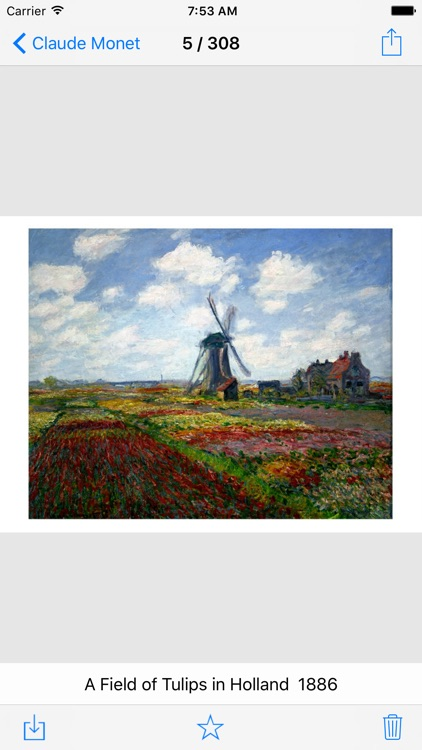 Claude Monet 308 Paintings Pro screenshot-3