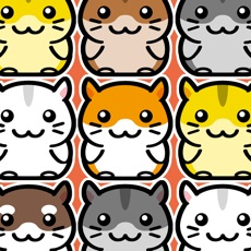 Activities of Hamster Land - Cute Pets Hamsters Column Matches Up Games