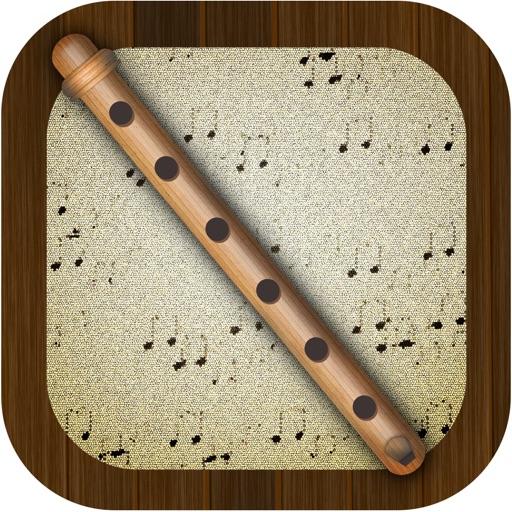 Flute Pro