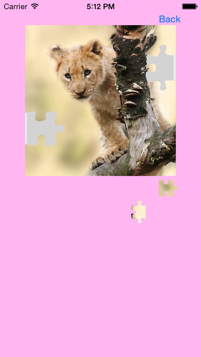 Safari Animals Jigsaw Puzzles