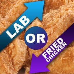 Lab Or Fried Chicken