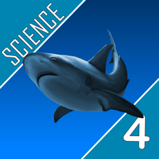 Activities of Science Quest  - Fourth Grade Quiz
