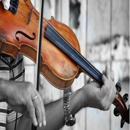 Violin Guide