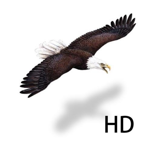 Birds Kingdom Free icon