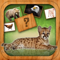 Codes for Animals Match Card Game Hack