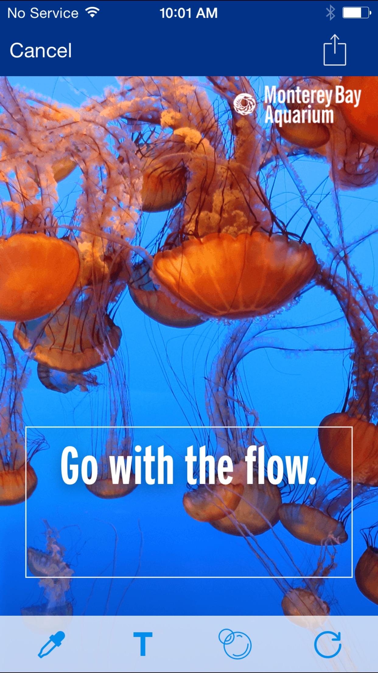 Screenshot do app Monterey Bay Aquarium