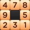 Arabic numerals cross-Sudoku Number@Puzzle