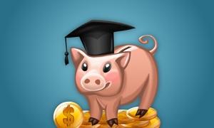 Money Saver Tips