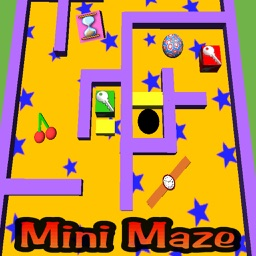 Mini Maze Pro